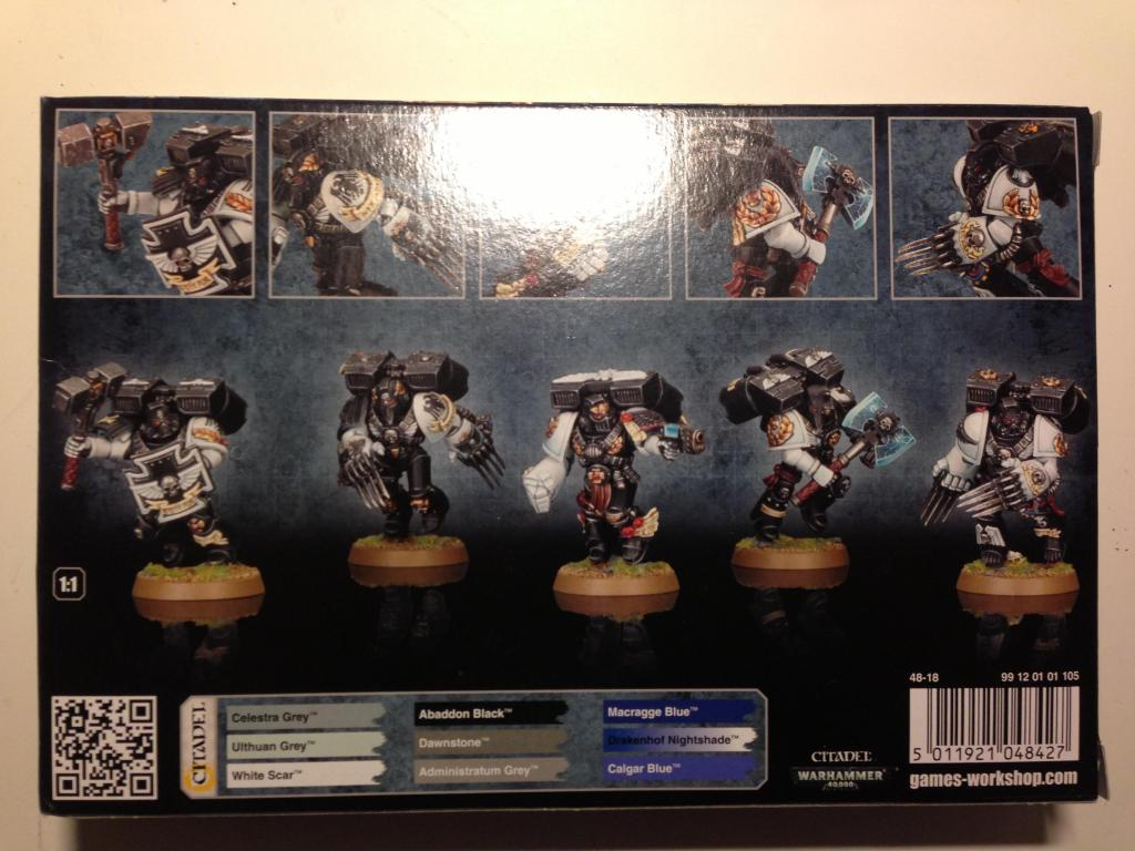 Codex : Space marines pour l'automne IMG_0029_zps22128ee2